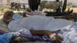Pemuka Agama Hindu India Minta Dewi Corona Redam Pandemi