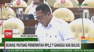 VIDEO: Buwas: Piutang Pemerintah Rp.1,2 T Ganggu Kas Bulog