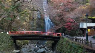 Mengecap Kanji dan Sayur Hambar di Jepang