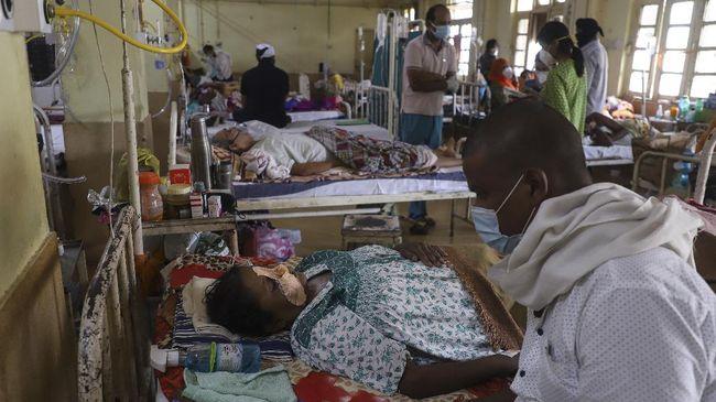Menurut Kementerian Kesehatan India, hingga saat ini ada lebih dari 4.300 orang meninggal karena kasus infeksi jamur hitam.