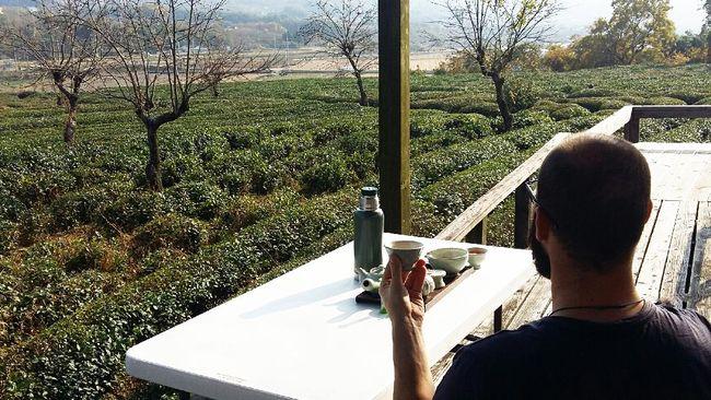 Korea Selatan memiliki banyak kebun teh yang menjadi tempat wisata. Berikut tujuh rekomendasi wisata kebun teh di Korea Selatan.