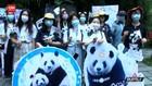 VIDEO: Ulang Tahun Panda Dirayakan Meriah