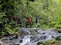 FOTO: Para Pelindung Hutan Leuser