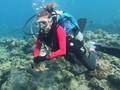 VIDEO: Aksi Penyelam Kumpulkan Sampah Masker di Laut Filipina