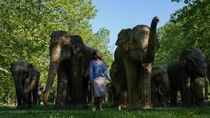 FOTO: 'Gajah-gajah' Pembawa Pesan di Sudut London