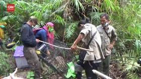 VIDEO: BBKSDA Sumut Lepasliarkan 5 Satwa di SM Siranggas