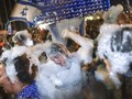 FOTO: Riuh Warga Israel Pesta Sabun Sambut PM Baru