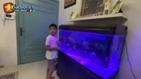 <p>Farid juga memiliki sebuah aqurium besar di dalam ruangan nih. Awalnya, aquarium itu diisi dengan 6 ikan, namun kini hanya tersisa satu. (Foto: YouTube Khairul azam alfarizi)</p>