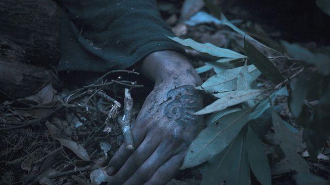 Saengsacho merupakan tanaman misterius yang bisa membangkitkan orang mati, dikisahkan dalam serial Kingdom: Ashin of the North.
