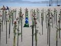 FOTO: Ratusan Mawar untuk 500 Ribu Kematian Covid di Brasil