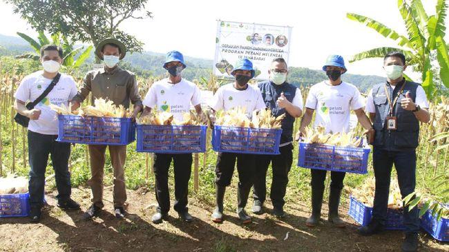 bank bjb turut andil dalam mensukseskan program Petani Milenial melalui sejumlah dukungan, salah satunya lewat pendanaan dengan skema KUR bagi para petani.