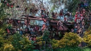 Misteri Pulau yang Dihuni Ratusan Boneka di Meksiko