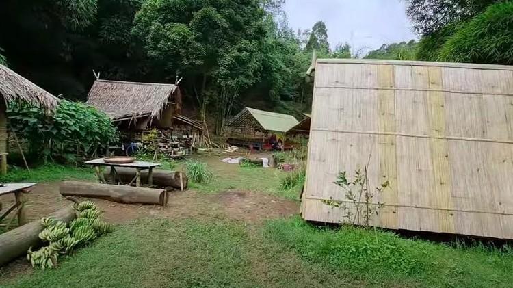Rumah Tengah Hutan
