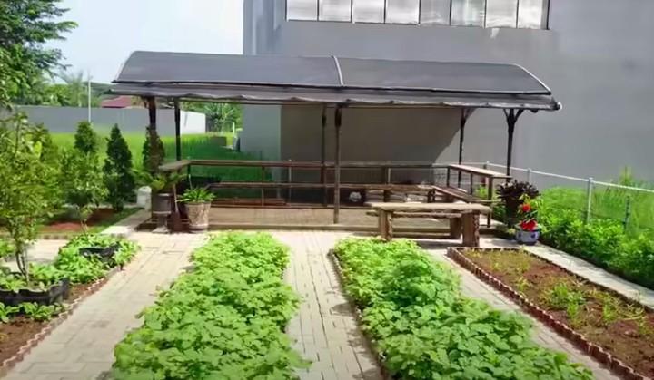Kebun Prilly Latuconsina