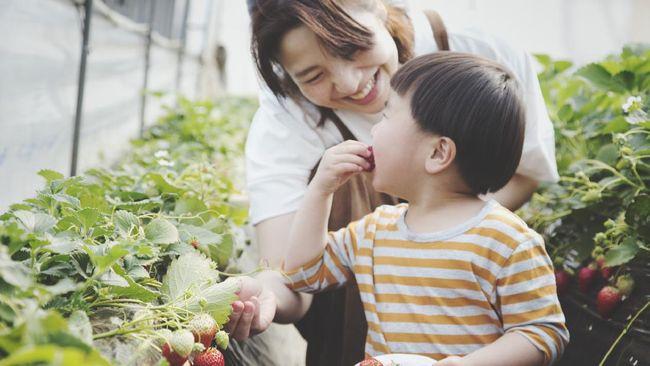Orang tua terkadang memberikan suplemen tambahan untuk tingkatkan nafsu makan anak. Padahal, ada cara lain untuk menyiasati masalah nafsu makan anak. Apa saja?