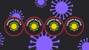 INFOGRAFIS: Sebaran Varian Baru Virus Corona di Indonesia