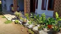 <p>Dari luar, Inces juga memajang beberapa tanaman hias koleksinya. (Foto: YouTube Inces TKW Arab)</p>