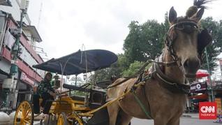 Elegi 'Kuda Makan Kuda' Saat Blokade Malioboro PPKM Darurat