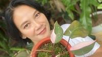 <p>Bunda empat anak ini menyukai tanaman hias jenis philodendron, Bunda. Ia juga mengoleksi philodendron pink princess yang warnanya sangat cantik, lho. (Foto: Instagram: @bu_deedee)</p>