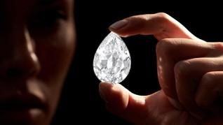 Berlian A101, Permata Termahal yang Dijual Pakai Uang Kripto