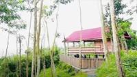 <p>Stand up comedian sekaligus aktor Dodit Mulyanto nyatanya memiliki rumah impian yang berbeda dari artis pada umumnya, Bunda. Tak mewah, ia justru membuat rumah dari kayu di tengah hutan. (Foto: YouTube: Dodit Mulyanto)</p>