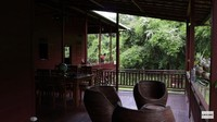 <p>Seorang YouTuber bernama Prada Kalaweit tinggal di sebuah rumah di tengah hutan Kalimantan, Bunda. Ia kerap membagikan kesehariannya, lho. (Foto: YouTube Prada Kalaweit)</p>
