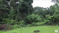 <p>Suasana rumah Prada sangat asri nih, Bunda. Di sekeliling rumah hanya terlihat pepohonan yang rimbun. (Foto: YouTube Prada Kalaweit)</p>