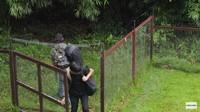 <p>Rumah Prada dikelilingi dengan pagar yang terbuat dari kayu dan kawat, Bunda. Desainnya pun sederhana namun sangat aman, lho. (Foto: YouTube Prada Kalaweit)</p>