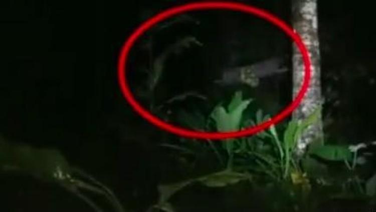 Teror Lampor di Malang