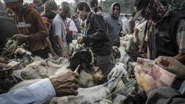 FOTO: Geliat Bisnis Jelang Iduladha di Tengah PPKM Darurat