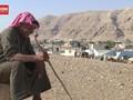 VIDEO: Penjual Kurban Palestina Sepi Pembeli Jelang Iduladha
