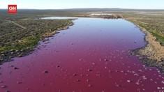 VIDEO: Laguna Argentina Berubah Warna akibat Limbah Pabrik