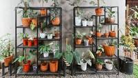 <p>Tempat Ersa Mayori menata tanamannya pun tak kalah menarik ya, Bunda? (Foto: Instagram @ersamayori)</p>