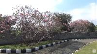 <p>Diketahui, makam tersebut miliki pengusaha rokok PT. Gudang Garam, Bunda. (Foto: YouTube CHAEM)</p>