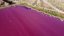 FOTO: Penampakan Danau di Patagonia yang Mendadak Pink