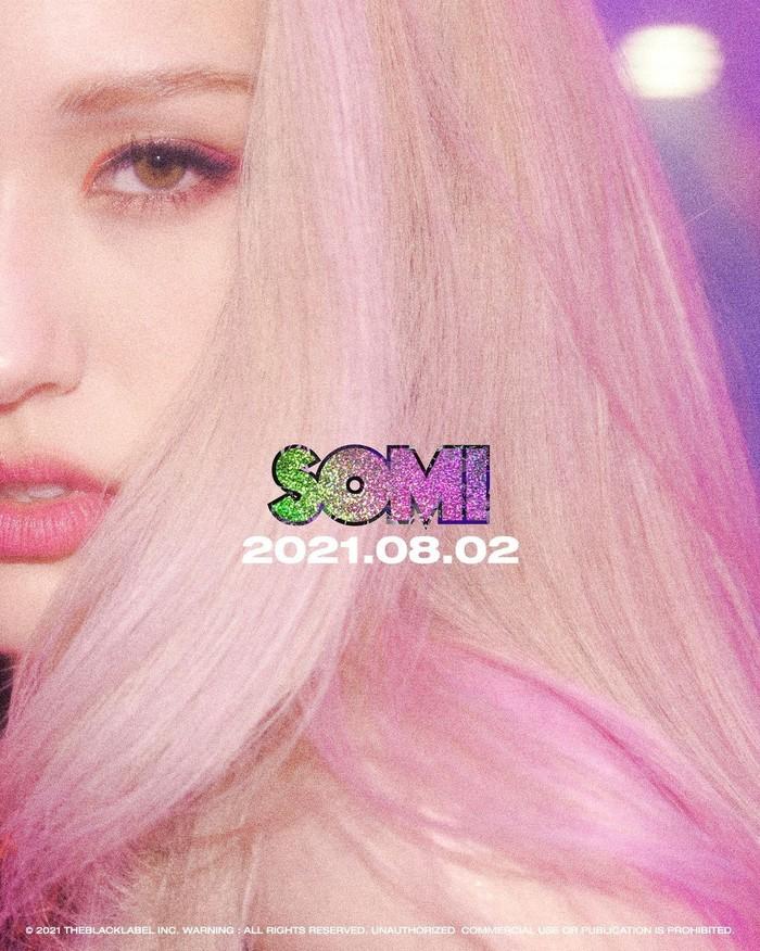Perempuan kelahiran 9 Maret 2001 ini memang baru berkarir sebagai solois selama 2 tahun terakhir. Di bawah naungan agensi The Black Label, Somi debut sebagai solois pada Juni 2019 dengan lagu berjudul