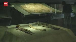 VIDEO: Teknik Mumifikasi Chile Masuk Warisan Dunia UNESCO