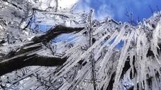 FOTO: Brasil Memutih Diselimuti Salju di Bulan Juli