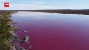 VIDEO: Melihat Danau Argentina Berwarna Pink Akibat Limbah