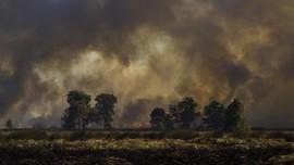 Kebakaran Besar Landa Turki, Tak Ada WNI Jadi Korban