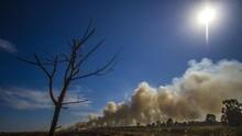 FOTO: Kemarau dan Titik Api Karhutla di Sumatra-Kalimantan