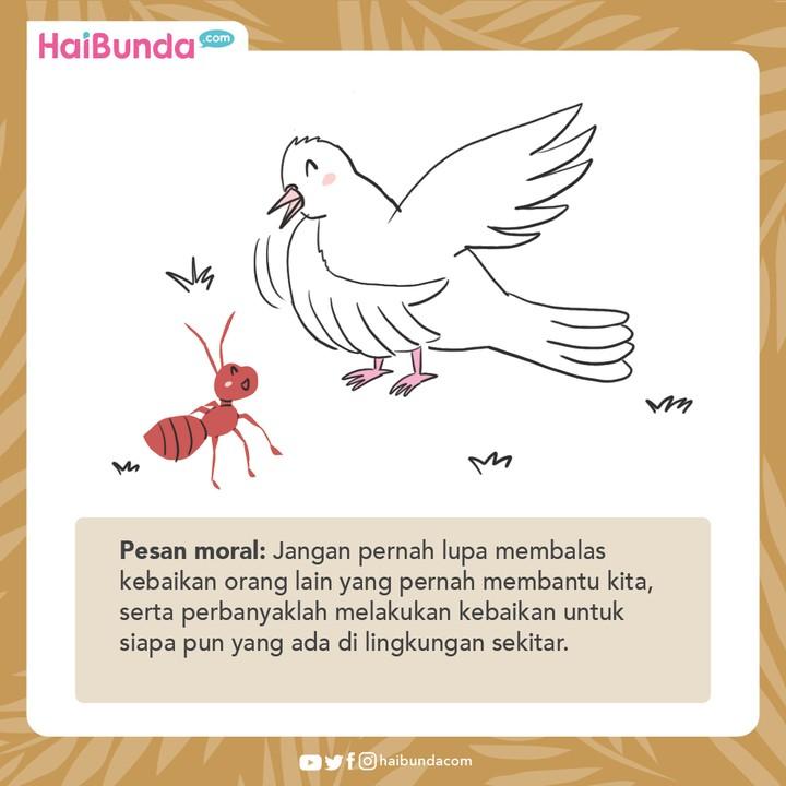 Cerita Nusantara Balas Budi Seekor Semut