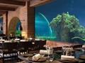 Koral di Bali Jadi Restoran 'Tercantik' di Dunia