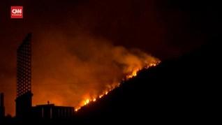 VIDEO: Kebakaran Hutan Masuki Area Pembangkit Listrik Turki