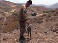 VIDEO: Israel Balas Serangan Roket dari Wilayah Libanon