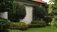 <p>Ajik Krisna melapisi seluruh tanah di halaman belakangnya dengan memakai rumput jepang. Selain itu, terdapat pula pohon-pohon pendek yang dibentuk dengan potongan bulat. (Foto: YouTube Boy William)</p>
