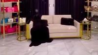 <p>Ruang <em>wardrobe</em> ini adalah salah satu korner favorit Tasyi. Nuansanya putih, hitam, dan emas menambah kesan elegan. (Foto: Instagram @tasyiiathasyia)</p>