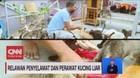 VIDEO: Relawan Penyelamat dan Perawat Kucing Liar