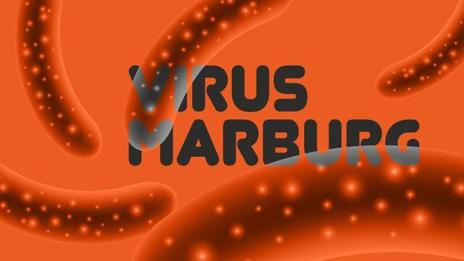 Organisasi Kesehatan Dunia (WHO) mengatakan wabah virus Marburg yang sempat mengkhawatirkan beberapa waktu lalu telah berakhir di Guinea.