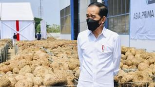 Ahli Sebut Oposisi Serang Jokowi dengan Bot di Pilpres 2014